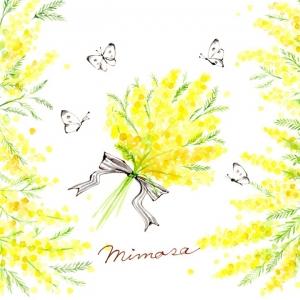 ミモザの花束とモンシロチョウ