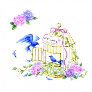 青い鳥と鳥かご