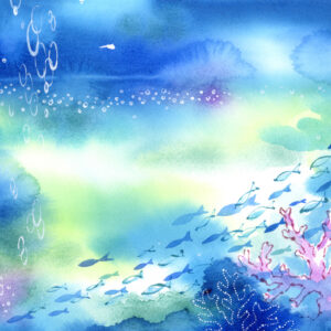 背景イメージ,海,魚,サンゴ,image,fish,sea